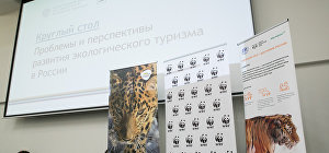 Roundtable discussion on the problems and prospects of ecotourism in Russia